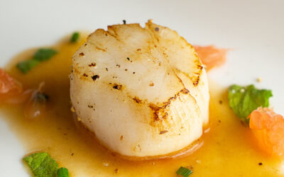 Pan Fried Scallops with Gin